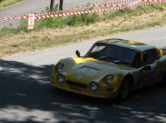 Propiac 2010 - Marcadier Barzoi - cote.jpg